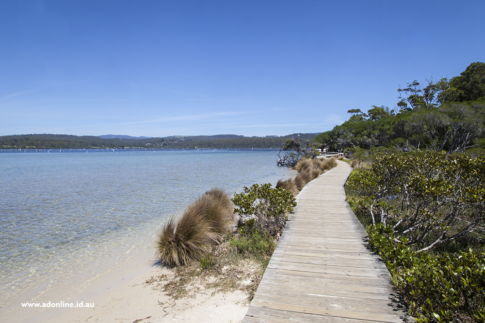 View of boardwalk with sand and water on one side and trees on the other.