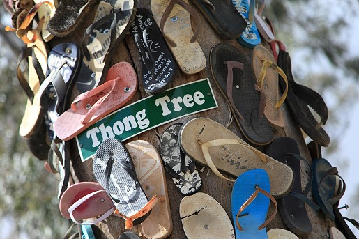 The Thong Tree
