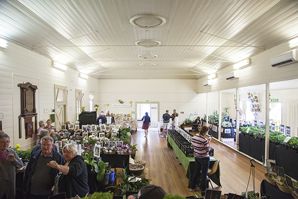 Interior of hall with plant stalls