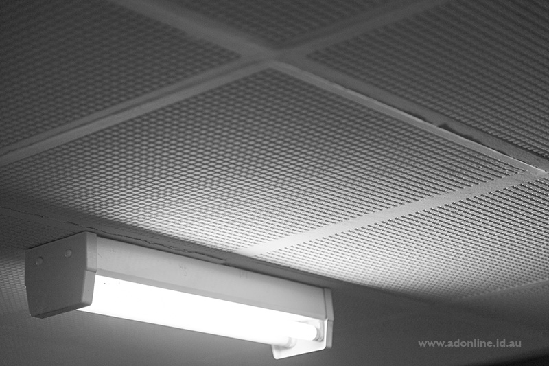 Fluorescent light and acousting tiles on ceiling